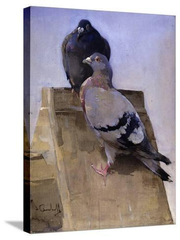 Pigeons on the Roof-Joseph Crawhall-Stretched Canvas Print