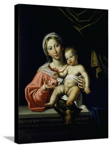 The Madonna Della Rosa, before 1627-Domenichino-Stretched Canvas Print