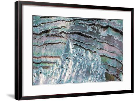 Abalone Shell--Framed Art Print