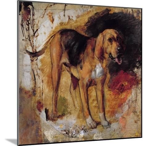 A Study of a Bloodhound, 1848-William Holman Hunt-Mounted Giclee Print