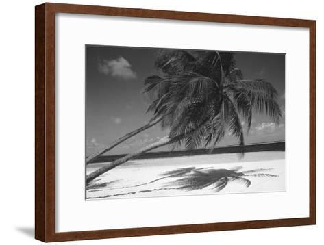 Palm Tree Shadow on Sand--Framed Art Print