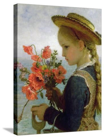 Poppy Girl-Karl Wilhelm Friedrich Bauerle-Stretched Canvas Print