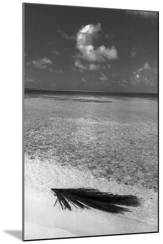 Sea View--Mounted Photographic Print