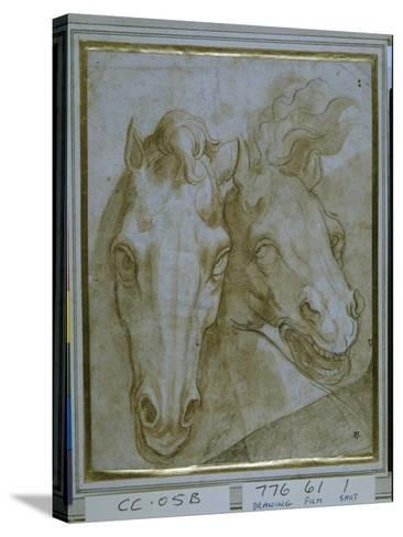 Studies for the Heads of Two Horses--Stretched Canvas Print