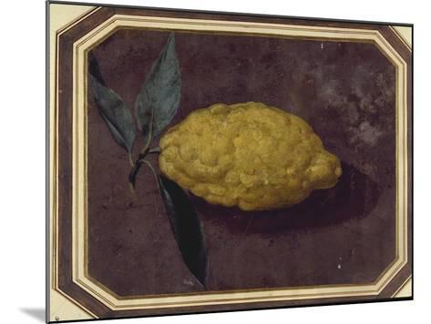 A Lemon--Mounted Giclee Print