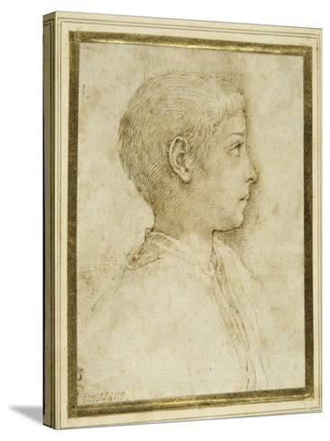Bust of a Boy in Profile to the Right-Parmigianino-Stretched Canvas Print