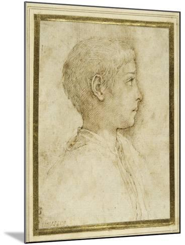 Bust of a Boy in Profile to the Right-Parmigianino-Mounted Giclee Print