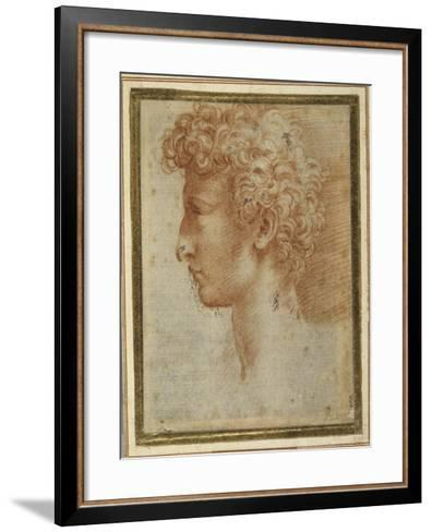 Profile of a Young Man-Parmigianino-Framed Art Print