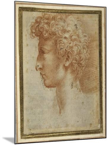 Profile of a Young Man-Parmigianino-Mounted Giclee Print