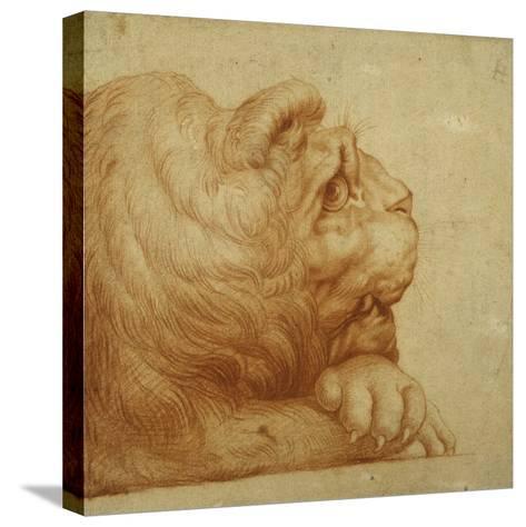 A Lion's Head in Profile-Francesco De Rossi Salviati Cecchino-Stretched Canvas Print
