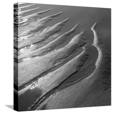 Creepers Designs and Pebble on Sand, Porbandar--Stretched Canvas Print