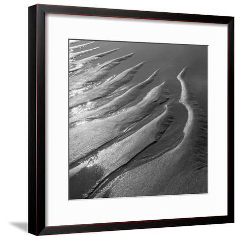 Creepers Designs and Pebble on Sand, Porbandar--Framed Art Print