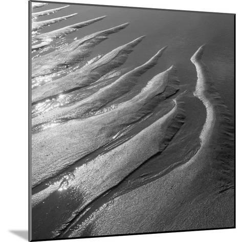 Creepers Designs and Pebble on Sand, Porbandar--Mounted Photographic Print
