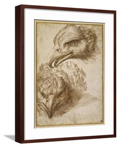 Studies of an Eagle's Head-Perino Del Vaga-Framed Art Print