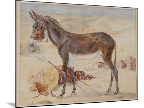 Mule--Mounted Giclee Print