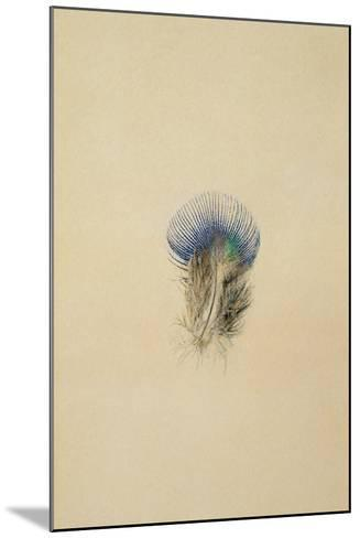 Study of a Peacock Feather, 1873-John Ruskin-Mounted Giclee Print