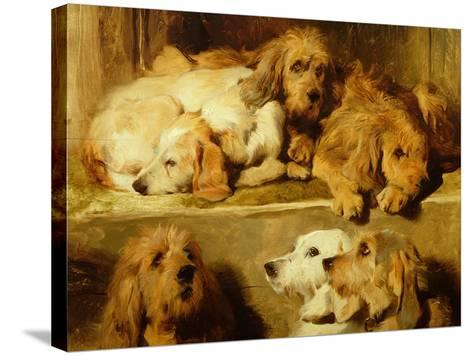 Hounds in a Kennel-Edwin Henry Landseer-Stretched Canvas Print
