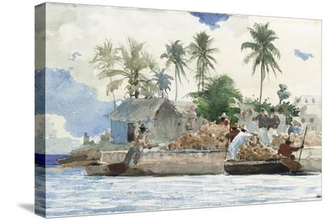 Sponge Fisherman, Bahamas-Winslow Homer-Stretched Canvas Print