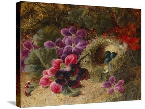 A Bird's Nest and Geraniums-Oliver Clare-Stretched Canvas Print