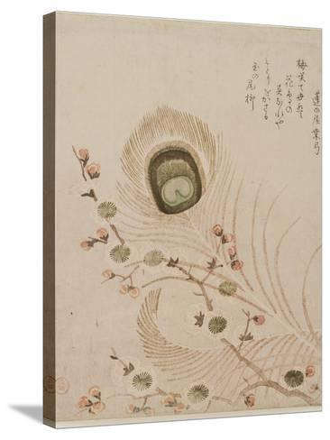 Plum Branch and Peacock Feathers, Mid to Late 1810s-Kubo Shumman-Stretched Canvas Print