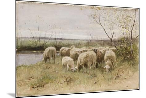 Sheep-Francois Pieter Ter Meulen-Mounted Giclee Print
