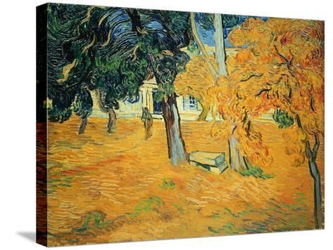 The Park at St. Paul's Hospital, St. Remy, 1889-Vincent van Gogh-Stretched Canvas Print