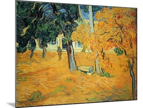 The Park at St. Paul's Hospital, St. Remy, 1889-Vincent van Gogh-Mounted Giclee Print
