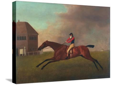 Baronet with Sam Chifney Up, 1791-George Stubbs-Stretched Canvas Print