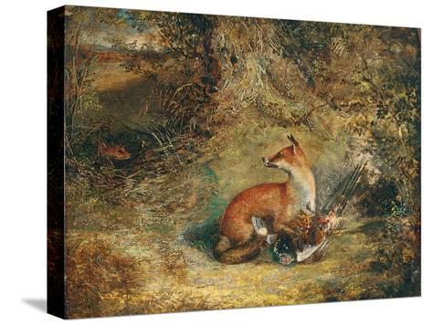 A Fox with a Pheasant-George Havell-Stretched Canvas Print