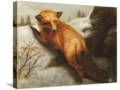 The Red Fox, 1870-Abbott Handerson Thayer-Stretched Canvas Print