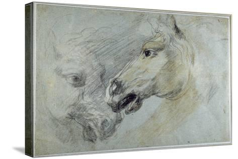 Two Studies of a Horse's Head-Jan Boeckhorst-Stretched Canvas Print
