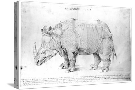 Rhinoceros, 1515-Albrecht D?rer-Stretched Canvas Print