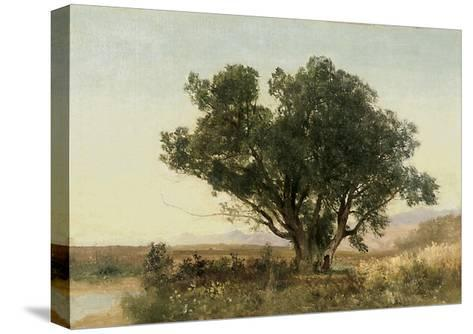 The Front Range, Colorado-John Frederick Kensett-Stretched Canvas Print