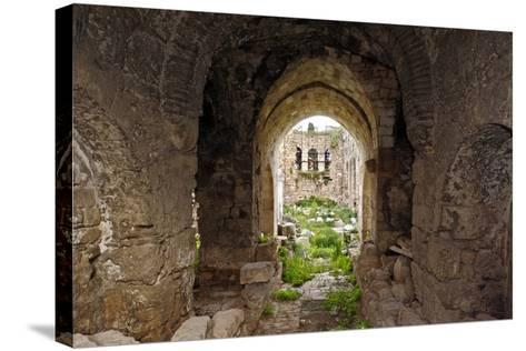 View of the Apse, Korkut Mosque, Turkey--Stretched Canvas Print