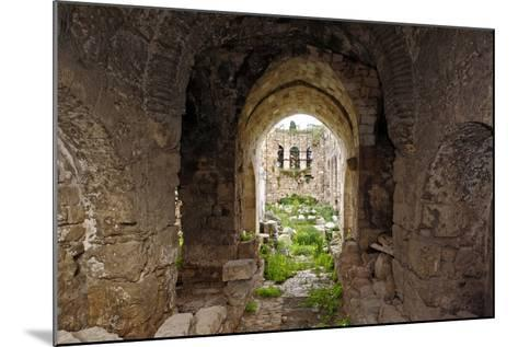 View of the Apse, Korkut Mosque, Turkey--Mounted Photographic Print