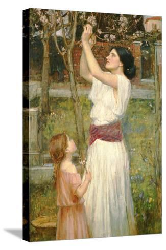 Almond Blossoms, C.1916-John William Waterhouse-Stretched Canvas Print