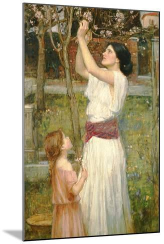 Almond Blossoms, C.1916-John William Waterhouse-Mounted Giclee Print