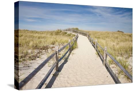 Dunes on Cape Cod National Sea Shore in Cape Cod, Boston, Usa--Stretched Canvas Print