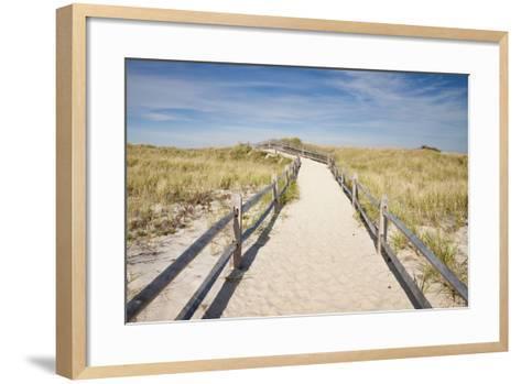 Dunes on Cape Cod National Sea Shore in Cape Cod, Boston, Usa--Framed Art Print