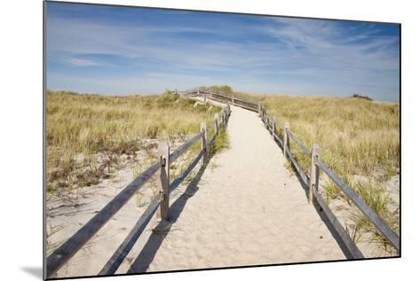 Dunes on Cape Cod National Sea Shore in Cape Cod, Boston, Usa--Mounted Photographic Print