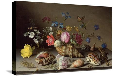 Flowers, Shells and Insects on a Stone Ledge-Balthasar van der Ast-Stretched Canvas Print