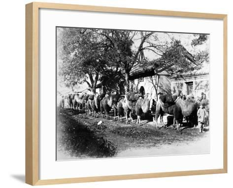 Camel Caravan on the Outskirts of Peking, C.1875--Framed Art Print