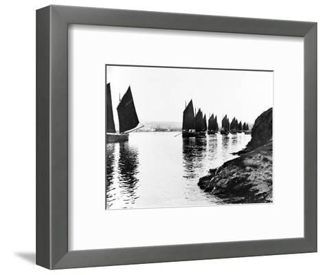 Regatta, Hayle Estuary, C.1890--Framed Art Print