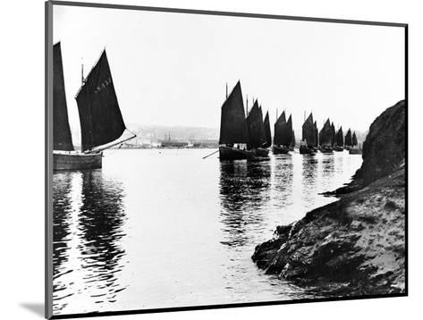 Regatta, Hayle Estuary, C.1890--Mounted Photographic Print