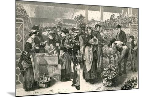 The Flower Market, Covent Garden, London-Edwin Buckman-Mounted Giclee Print