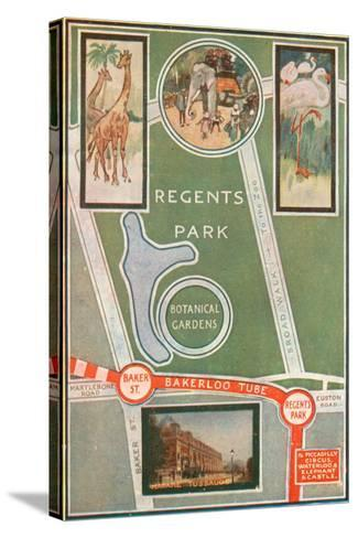 Regents Park and Botanical Gardens, Showing Local Railway Stations--Stretched Canvas Print