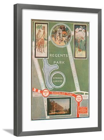 Regents Park and Botanical Gardens, Showing Local Railway Stations--Framed Art Print