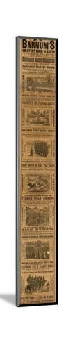Advert for P T Barnum's Greatest Show on Earth--Mounted Giclee Print