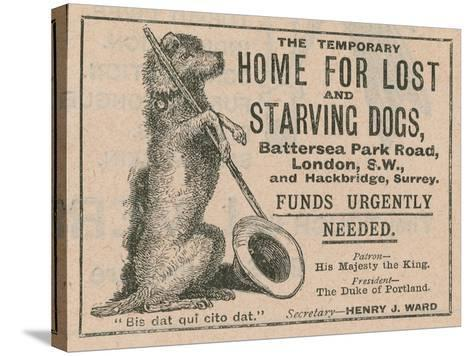 Advertisement for Battersea Dogs Home--Stretched Canvas Print