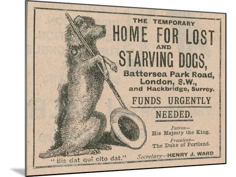 Advertisement for Battersea Dogs Home--Mounted Giclee Print